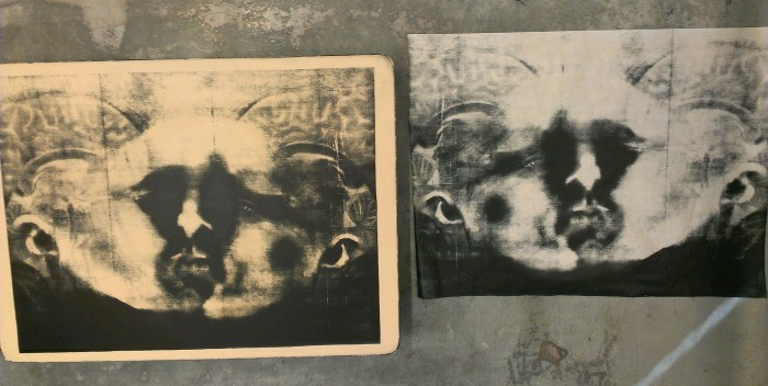 The Scan and the Mirror, Darian Goldin Stahl. In progress.