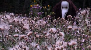 Creature Lurking Behind A Field Of Pink Weeds